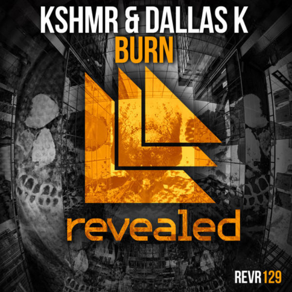 Burn cover art